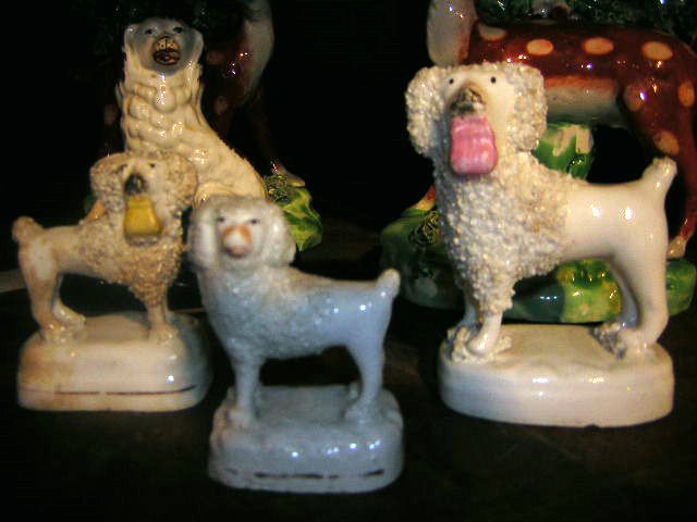 Poodles with Purses!